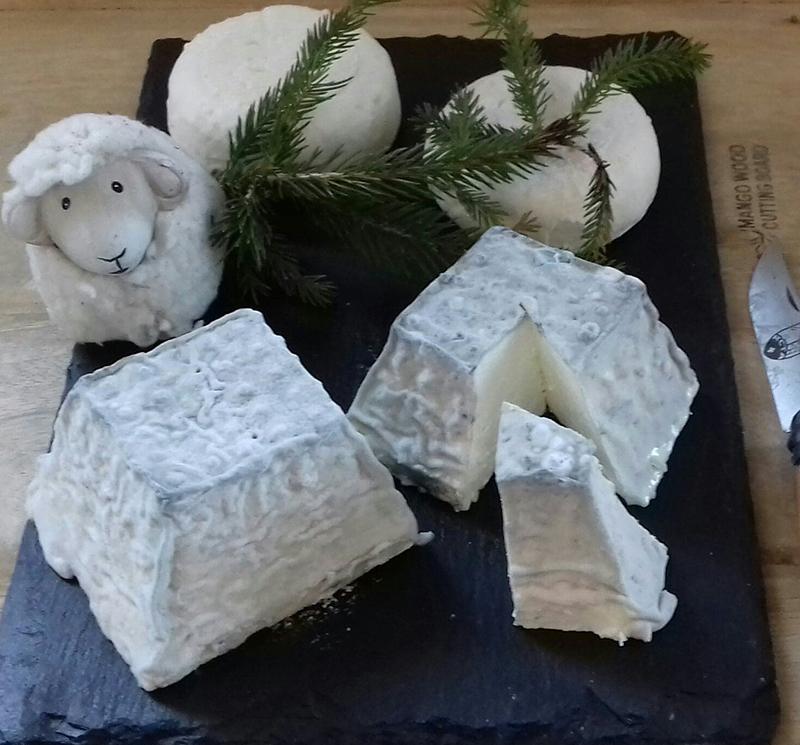 Les Petites Reines, ferme bio - fromage de brebis, partenaire de l'épicerie Rive-bio à Annecy